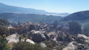 Seydikemer'de makilik alandaki yangın söndürüldü