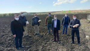 Silajlık mısır çeşit demonstrasyonlarına ait tohumlar teslim edildi