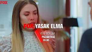 Yasak Elma 108. bölüm fragmanı izle! Yasak Elma dizisi 108. tanıtım fragmanı yayınlandı mı? FOX TV YouTube