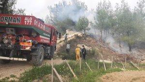 Yaşlı adam, çıkardığı orman yangınını çalıyla söndürmeye çalıştı