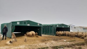 Yaylada mahsur kalan koyuncuların imdadına Kocasinan Belediyesi yetişti