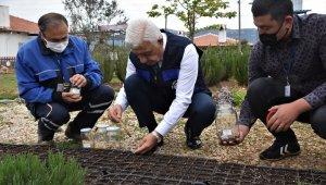 Yerel tohumlar toprakla buluştu