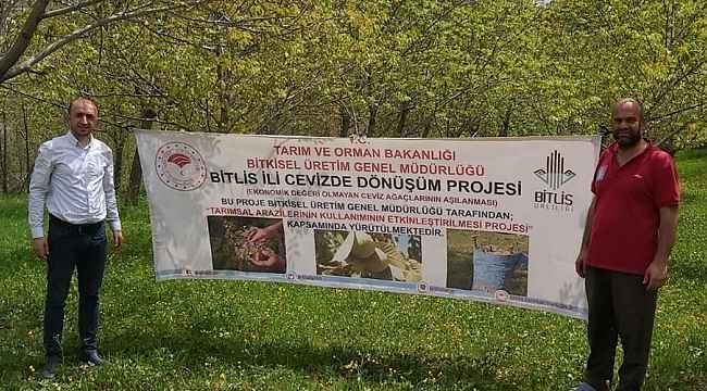 Bitlis'te 'Cevizde Dönüşüm' projesi başlatıldı