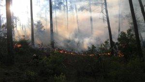 Burdur'da orman yangını vatandaşlar ve ekipler tarafından söndürüldü
