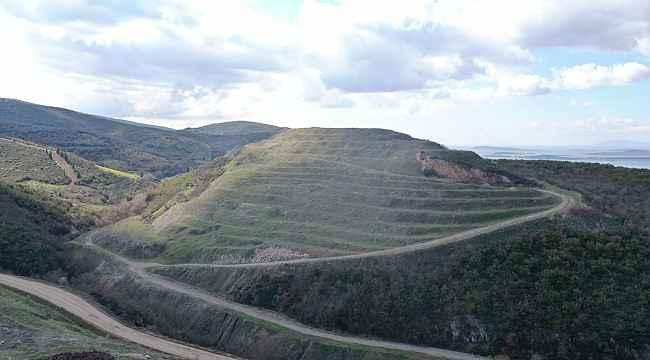 Bursa'da maden ocakları ağaçlandırılıyor - Bursa Haberleri