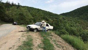 Çanakkale'de takla atan otomobildeki arılar yola saçıldı