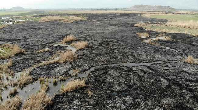 Erzincan'da kuş cennetinde gece çıkan yangın tamamen söndü