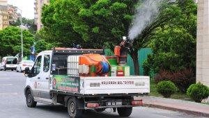 Keçiören Belediyesinden sineksiz yaz için ilaçlama seferberliği