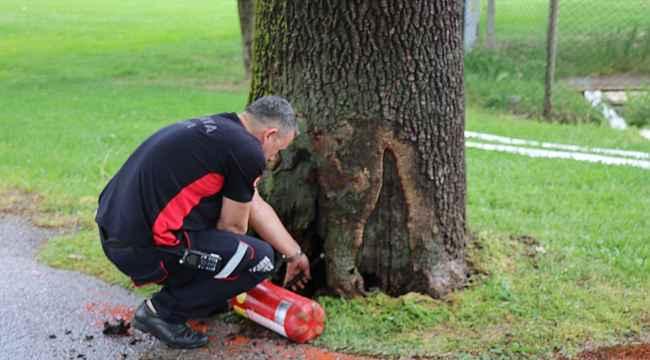 Parkta çıkan ağaç yangını faciaya dönüşmeden söndürüldü