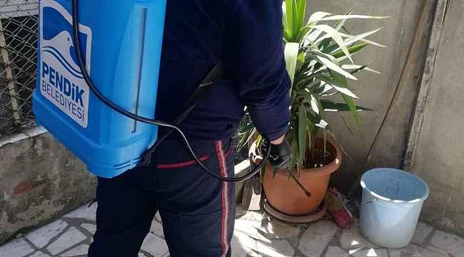 Pendik Belediyesi ekipleri ilaçlamalara başladı