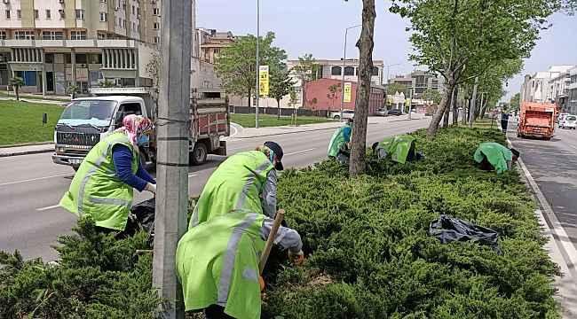 Yeşil Bursa yaza hazırlanıyor - Bursa Haberleri