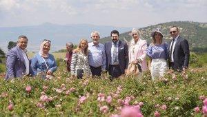 8 belediye başkanı ve 4 milletvekili Isparta'da gül topladı