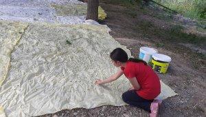Artvin'de meşhur İşhan Pekmezi geleneksel yöntemlerle hazırlanıyor