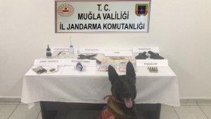 Bodrum'da uyuşturucu ve silah ele geçirildi