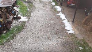 Çanakkale Yenice'de dolu tarım ürünlerine zarar verdi