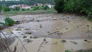 Dereler taştı, tarım arazileri sular altında kaldı