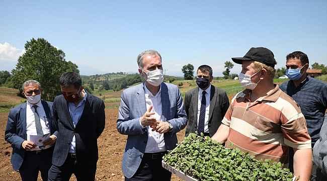 İnegöl'de ilk ekinezya ekimi gerçekleşti - Bursa Haberleri