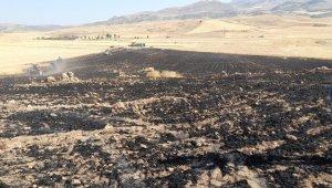 Kurtalan'da 50 dönümlük buğday ekili tarla kül oldu