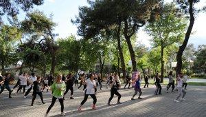 Menteşe Belediyesi yaz kursları başlıyor