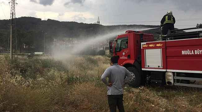 Menteşe'de yıldırım yangını
