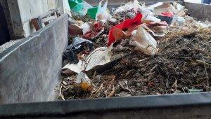 """""""Kokuyor"""" diye şikayet edilen evden 1 römork dolusu çöp çıktı"""