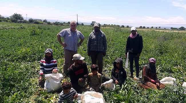"""Seyitoğlu: """"Mevsimlik işçiler bizim misafirimizdir"""" - Bursa Haberleri"""