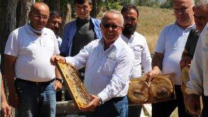 """TAB Genel Başkanı Şahin: """"Arıların sigortasını attırmayın"""""""