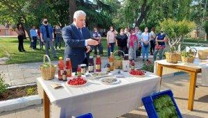 Tekirdağ'da coğrafi tescilli Yapıncak Yaprağı için hasat şenliği