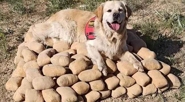 Toprağa gömülü 233,5 kilo eroin ele geçirildi
