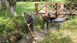 Türbin Mesire Alanı'ndaki bakım ve çevre düzenlemesi çalışmaları başladı