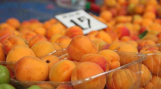 Yaz meyveleri arasında en pahalı 'Kayısı'