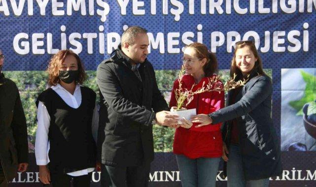 Bursa'da üreticilere